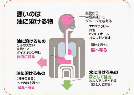 POP_体内脂肪蓄積[1]